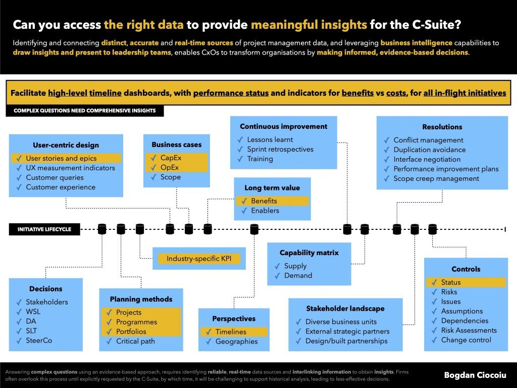 Can you access the right data to provide meaningful insights for the C-Suite? - Bogdan Ciocoiu - information management
